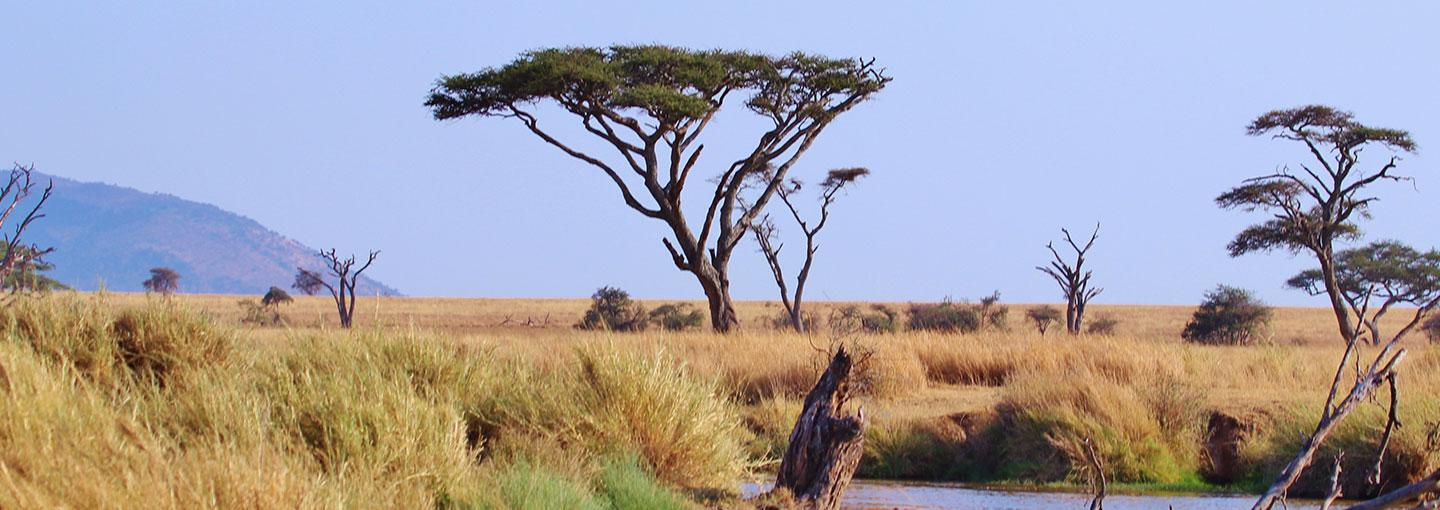 Tanzania Country People Wildlife And Environment
