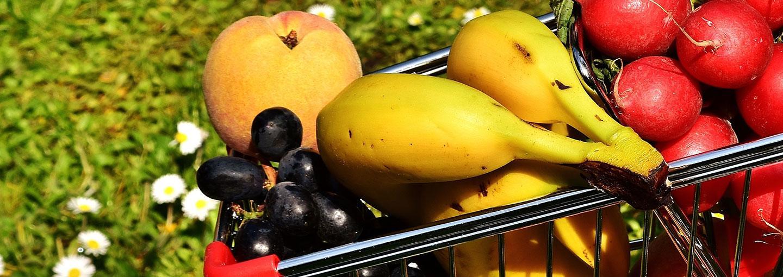 Image - The Health Risks of GMOs