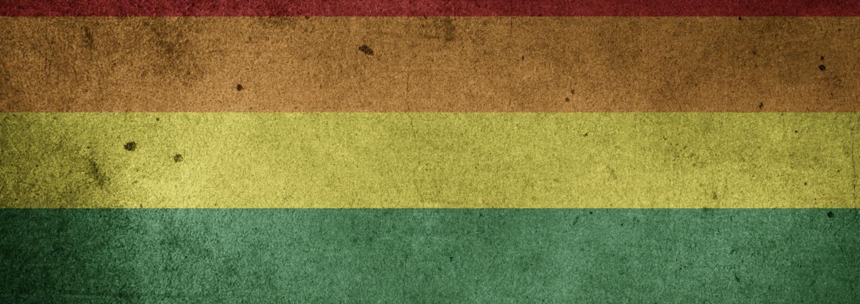 Image - rustic pride flag
