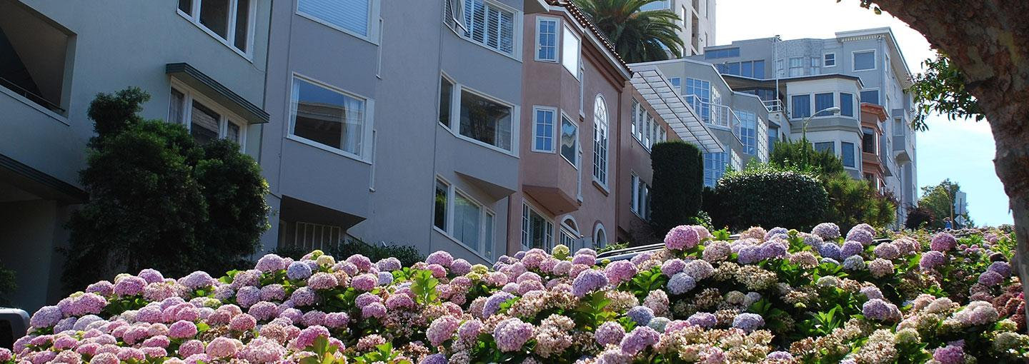 Image - Russian Hill Walking Tour