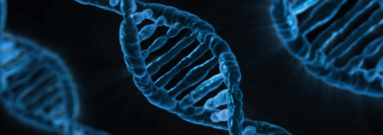 Image - CRISPR Gene Editing