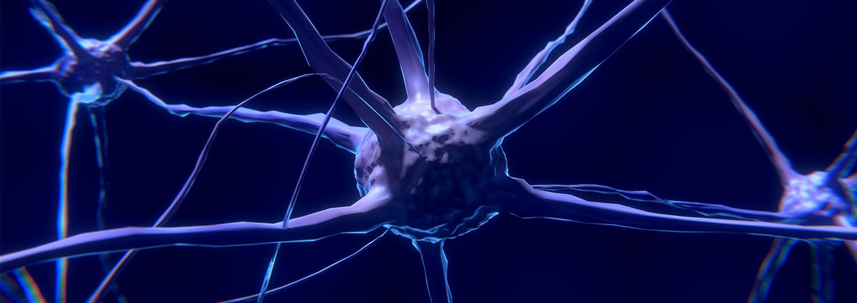 Image - Brain Plasticity Revolution