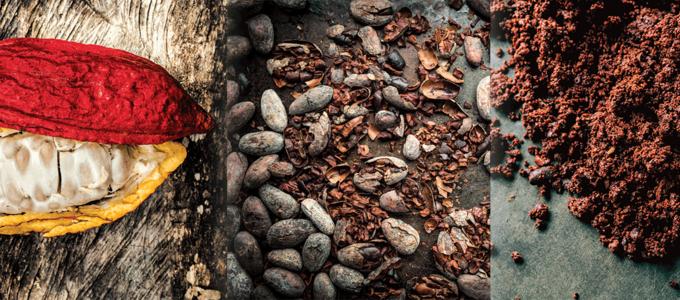 Image - Making Chocolate