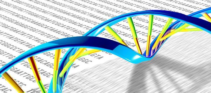Image - Carl Zimmer: Understanding Heredity