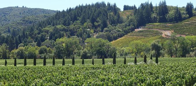 Image - Holiday Toast to the 2018 Vineyards and Wineries