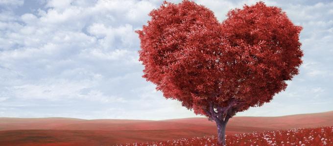 Image - heart-shaped tree