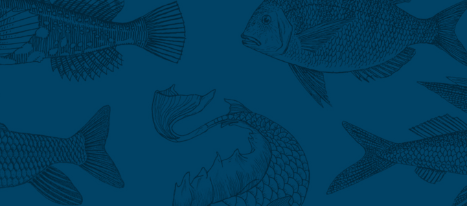 Image - Why Fish Don't Exist: Invisibilia's Lulu Miller