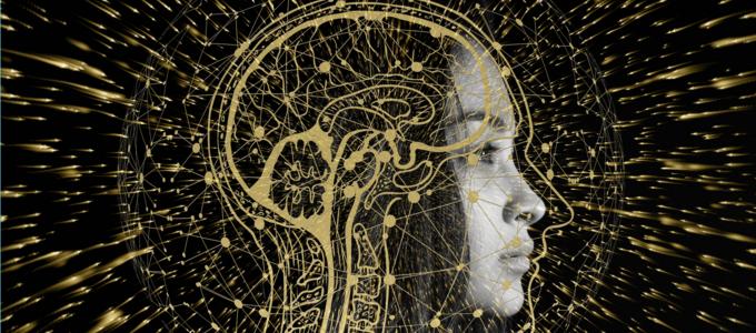Image - woman's brain illustration