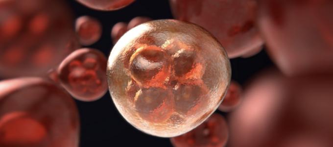 Image - cancer cells