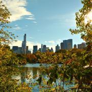 Image - New York