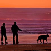 Image - Guide to Retirement Living Alternatives